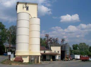 Loudoun County Milling near Hamilton Virginia