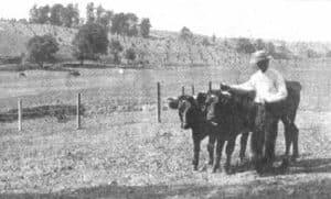 Waterford Virginia farm