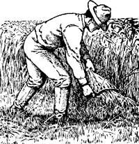 Early farming woodcut