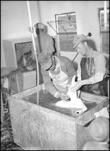 Workers at Greenfield Farm in Loudoun County place turkeys in scalding water to help in the removal of feathers in this 1950s photo.