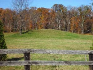 Indian mound off Route 15 and Foxfield Lane south of Leesburg VA