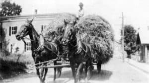 This picture (1880-1900) shows a haywagon on Main Street in downtown Round Hill